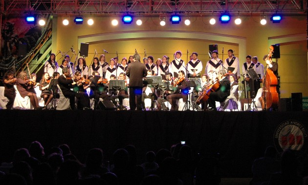 Camerata Coro UNAB 2012 600