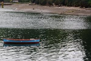 pescadores algas
