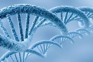 biologia-molecular-citologia