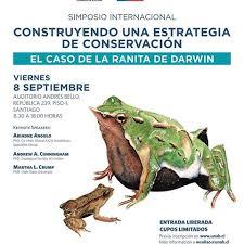conservación ranita darwin