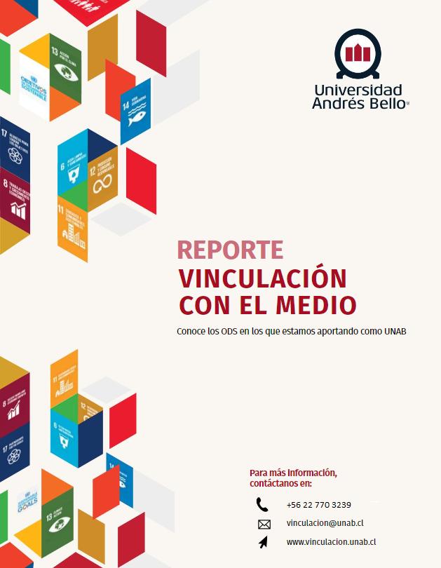 Reporte VcM 2017